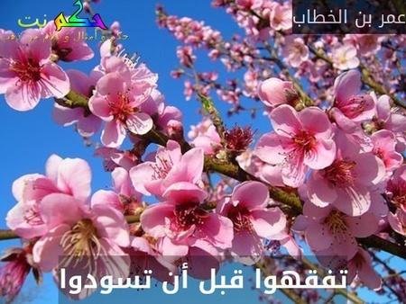 تفقهوا قبل أن تسودوا-عمر بن الخطاب