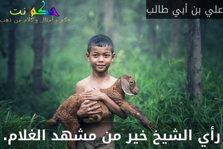 رأي الشيخ خير من مشهد الغلام.-علي بن أبي طالب