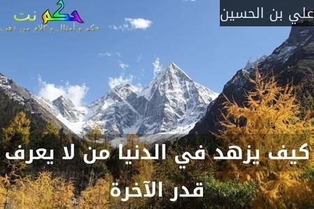 كيف يزهد في الدنيا من لا يعرف قدر الآخرة-علي بن الحسين