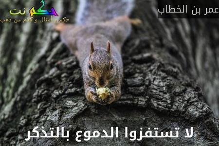لا تستفزوا الدموع بالتذكر-عمر بن الخطاب