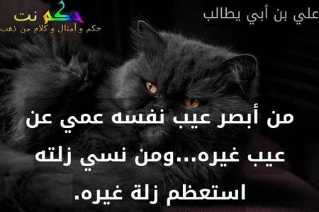 من أبصر عيب نفسه عمي عن عيب غيره...ومن نسي زلته استعظم زلة غيره.-علي بن أبي يطالب