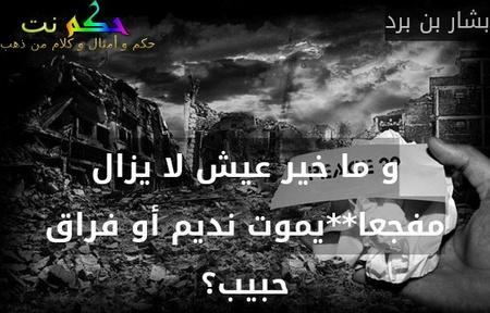 و ما خير عيش لا يزال مفجعا**يموت نديم أو فراق حبيب؟-بشار بن برد