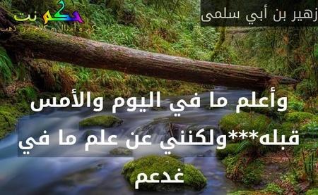 وأعلم ما في اليوم والأمس قبله***ولكنني عن علم ما في غدعم-زهير بن أبي سلمى
