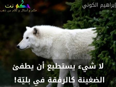 لا شيء يستطيع أن يطفئ الضغينة كالرفقة في بليّة! -إبراهيم الكوني