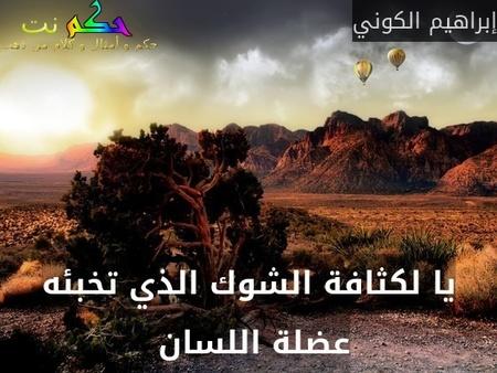 يا لكثافة الشوك الذي تخبئه عضلة اللسان -إبراهيم الكوني