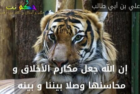 إن الله جعل مكارم الأخلاق و محاسنها وصلا بيننا و بينه -علي بن أبي طالب
