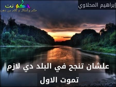 علشان تنجح في البلد دي لازم تموت الاول -إبراهيم المحلاوي
