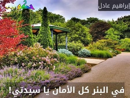 في البئر كل الأمان يا سيدتي! -إبراهيم عادل