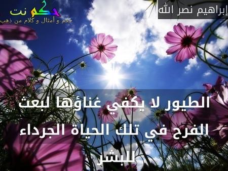 الطيور لا يكفي غناؤها لبعث الفرح في تلك الحياة الجرداء للبشر -إبراهيم نصر الله