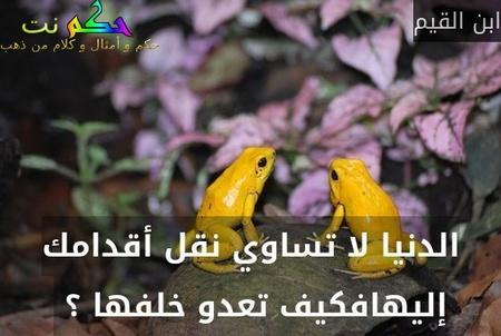 الدنيا لا تساوي نقل أقدامك إليهافكيف تعدو خلفها ؟ -ابن القيم