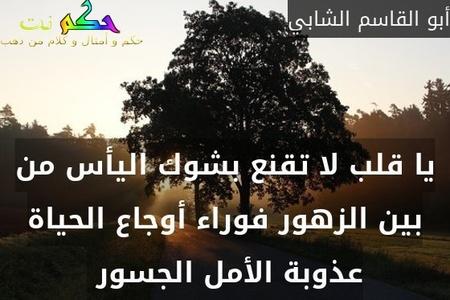 يا قلب لا تقنع بشوك اليأس من بين الزهور فوراء أوجاع الحياة عذوبة الأمل الجسور -أبو القاسم الشابي