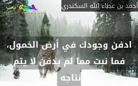 ادفن وجودك في أرض الخمول، فما نبت مما لم يدفن لا يتم نتاجه -أحمد بن عطاء الله السكندري