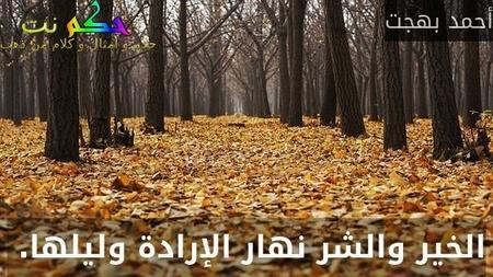 الخير والشر نهار الإرادة وليلها. -أحمد بهجت