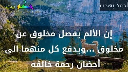 إن الألم يفصل مخلوق عن مخلوق ...ويدفع كل منهما الى أحضان رحمة خالقه -أحمد بهجت
