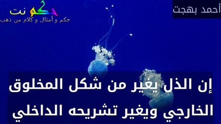 إن الذل يغير من شكل المخلوق الخارجي ويغير تشريحه الداخلي -أحمد بهجت