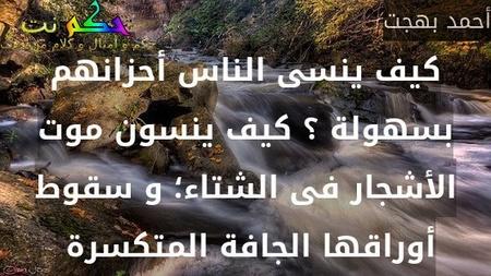 كيف ينسى الناس أحزانهم بسهولة ؟ كيف ينسون موت الأشجار فى الشتاء؛ و سقوط أوراقها الجافة المتكسرة -أحمد بهجت
