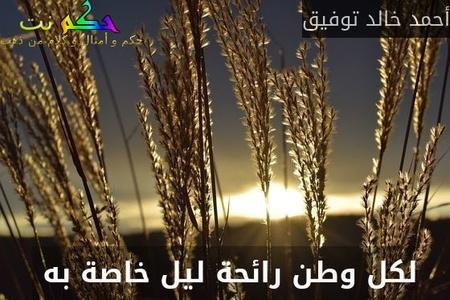 لكل وطن رائحة ليل خاصة به -أحمد خالد توفيق