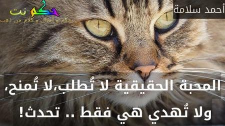 المحبة الحقيقية لا تُطلب،لا تُمنح، ولا تُهدي هي فقط .. تحدث! -أحمد سلامة