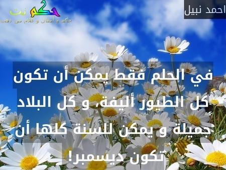 في الحلم فقط يمكن أن تكون كل الطيور أليفة، و كل البلاد جميلة و يمكن للسنة كلها أن تكون ديسمبر! -احمد نبيل