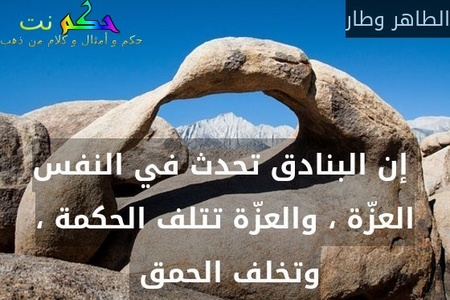 إن البنادق تحدث في النفس العزّة ، والعزّة تتلف الحكمة ، وتخلف الحمق -الطاهر وطار