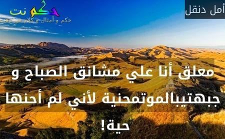 معلق أنا علي مشانق الصباح و جبهتيبالموتمحنية لأني لم أحنها حية! -أمل دنقل