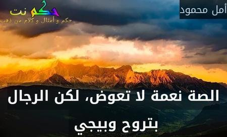 الصة نعمة لا تعوض، لكن الرجال بتروح وبيجي -أمل محمود
