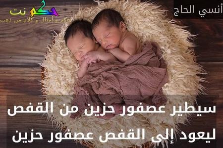 سيطير عصفور حزين من القفص ليعود إلى القفص عصفور حزين -أنسي الحاج