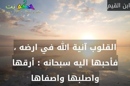 القلوب آنية الله في ارضه ، فأحبها اليه سبحانه : أرقها واصلبها واصفاها-ابن القيم