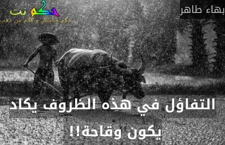 التفاؤل في هذه الظروف يكاد يكون وقاحة!! -بهاء طاهر