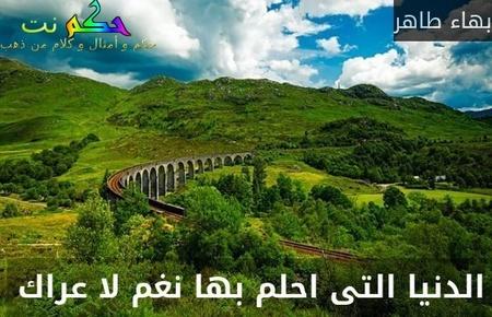 الدنيا التى احلم بها نغم لا عراك -بهاء طاهر
