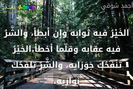 الخَيْرُ فيه ثَوابه وإن أبطأ، والشَّرُ فيه عقابه وقلّما أخطأ.الخَيْرُ تَنْفحُك جَوَزايه، والشَّرُ تلفحُكَ نَوازِيه.-أحمد شوقي