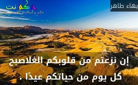 إن نزعتم من قلوبكم الغلاصبح كل يوم من حياتكم عيدًا . -بهاء طاهر