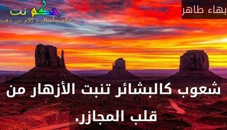 شعوب كالبشائر تنبت الأزهار من قلب المجازر. -بهاء طاهر