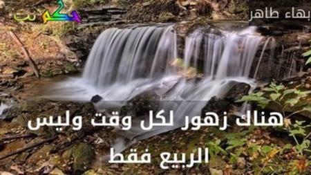 هناك زهور لكل وقت وليس الربيع فقط -بهاء طاهر