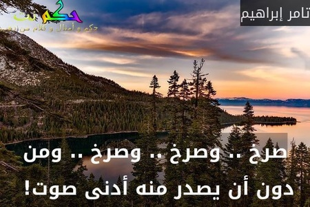 صرخ .. وصرخ .. وصرخ .. ومن دون أن يصدر منه أدنى صوت! -تامر إبراهيم