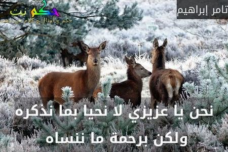 نحن يا عزيزي لا نحيا بما نذكره ولكن برحمة ما ننساه -تامر إبراهيم