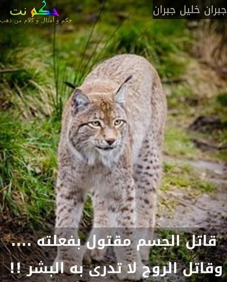 قاتل الجسم مقتول بفعلته .... وقاتل الروح لا تدرى به البشر !! -جبران خليل جبران