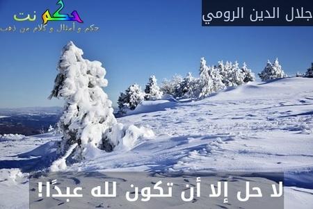 لا حل إلا أن تكون لله عبدًا! -جلال الدين الرومي