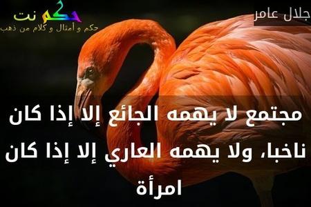مجتمع لا يهمه الجائع إلا إذا كان ناخبا، ولا يهمه العاري إلا إذا كان امرأة -جلال عامر