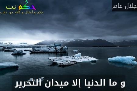 و ما الدنيا إلا ميدان التحرير -جلال عامر