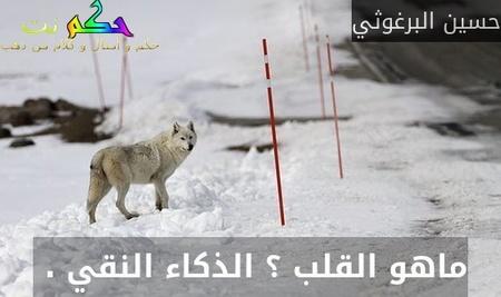 ماهو القلب ؟ الذكاء النقي . -حسين البرغوثي