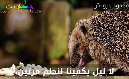 لا ليل يكفينا لنحلم مرتين.-محمود درويش