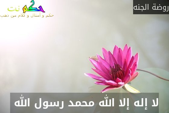 لا إله إلا الله محمد رسول الله -روضة الجنه