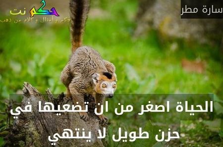 الحياة اصغر من ان تضعيها في حزن طويل لا ينتهي -سارة مطر
