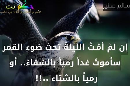 إن لمْ أمُـتْ الليلةَ تحتَ ضوءِ القمر سأموتُ غداً رمياً بالشقاءْ.. أو رمياً بالشتاء ..!! -سالم عطير