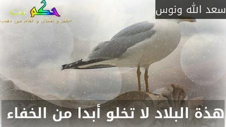 هذة البلاد لا تخلو أبدا من الخفاء -سعد الله ونوس