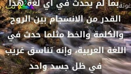 ربما لم يحدث في أي لغة هذا القدر من الانسجام بين الروح والكلمة والخط مثلما حدث في اللغة العربية، وإنه تناسق غريب في ظل جسد واحد-غوته