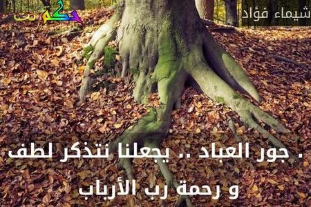 . جور العباد .. يجعلنا نتذكر لطف و رحمة رب الأرباب -شيماء فؤاد