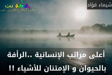 أعلى مراتب الإنسانية ..الرأفة بالحيوان و الإمتنان للأشياء !! -شيماء فؤاد