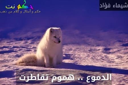الدموع .. هموم تقاطرت -شيماء فؤاد